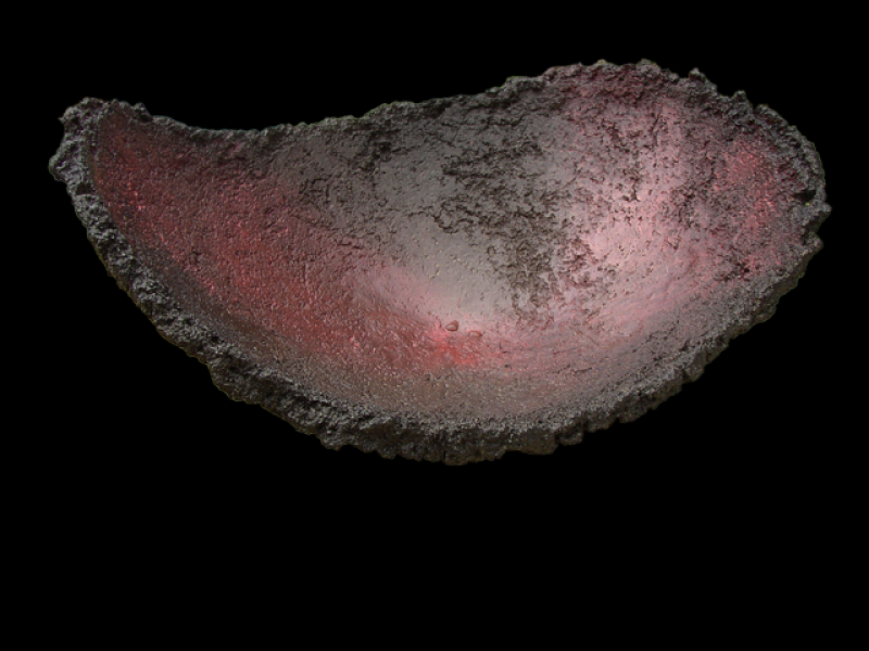 Image of Lava Chip